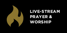 Live-stream Prayer & Worship Nights Button